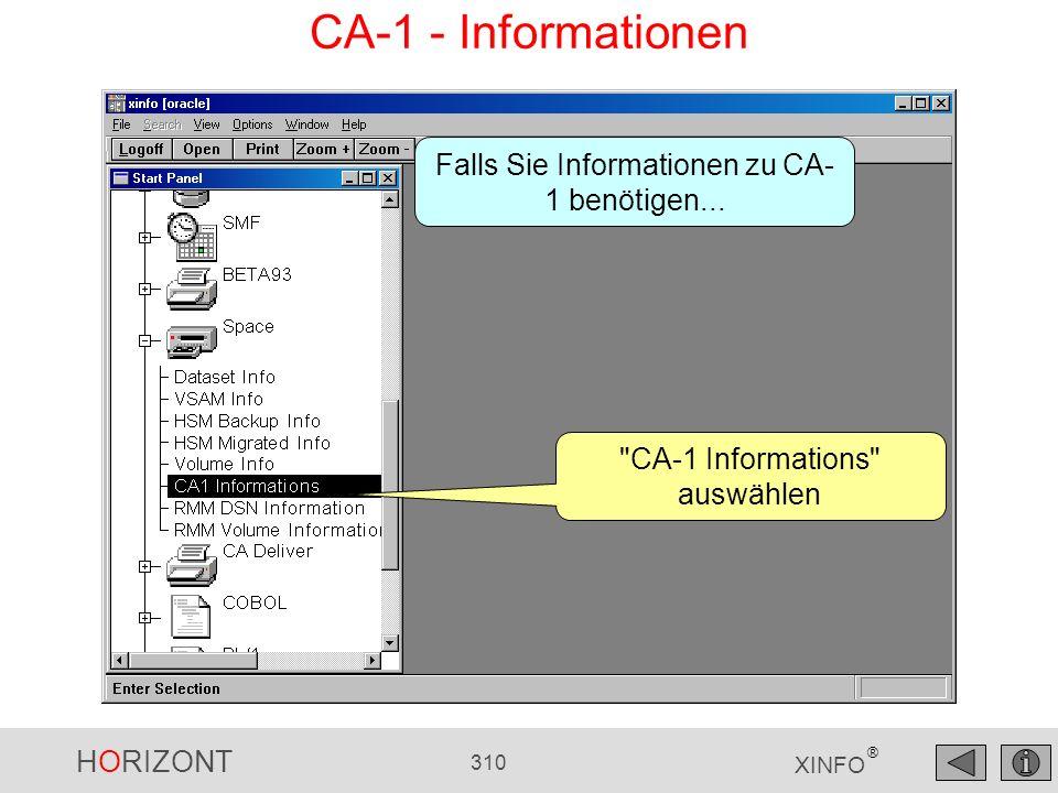 HORIZONT 310 XINFO ® CA-1 - Informationen