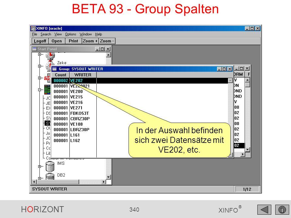 HORIZONT 340 XINFO ® BETA 93 - Group Spalten In der Auswahl befinden sich zwei Datensätze mit VE202, etc.