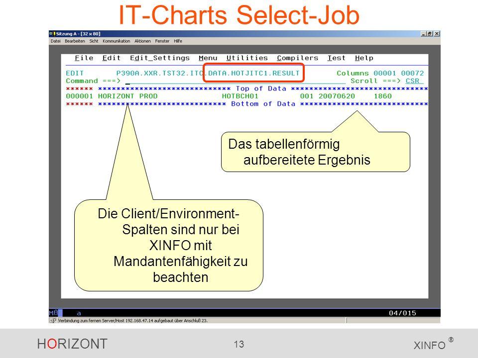 HORIZONT 13 XINFO ® IT-Charts Select-Job Das tabellenförmig aufbereitete Ergebnis Die Client/Environment- Spalten sind nur bei XINFO mit Mandantenfähigkeit zu beachten