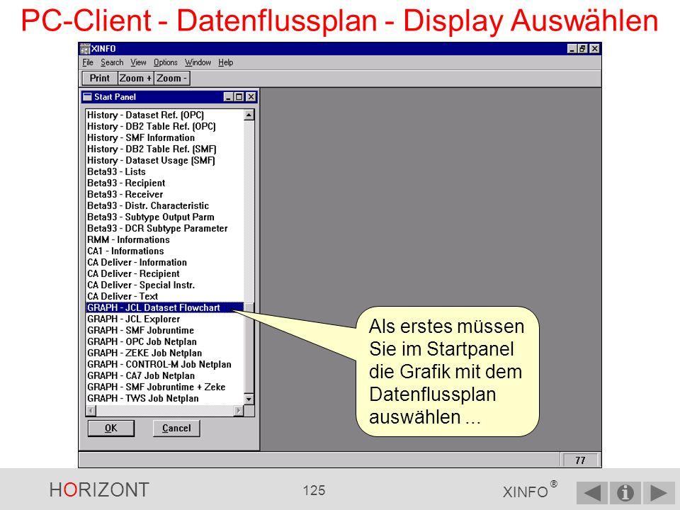HORIZONT 124 XINFO ® PC-Client - Datenflussplan Jobs Joblibs Steps Programme DD DSN DB2 IMS Der XINFO-Datenflussplan zeigt Ihnen die JCL grafisch an.