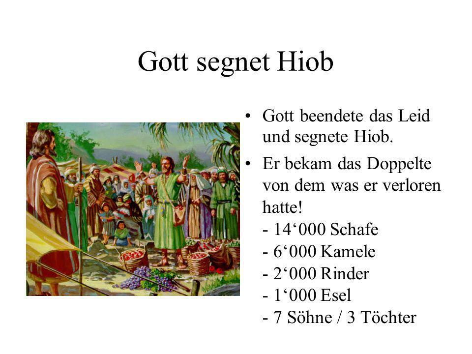 Gott segnet Hiob Gott beendete das Leid und segnete Hiob. Er bekam das Doppelte von dem was er verloren hatte! - 14000 Schafe - 6000 Kamele - 2000 Rin
