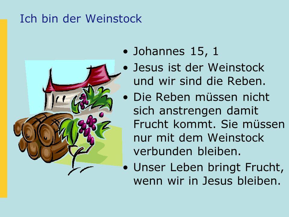 Ich bin der Weinstock Johannes 15, 1 Jesus ist der Weinstock und wir sind die Reben. Die Reben müssen nicht sich anstrengen damit Frucht kommt. Sie mü