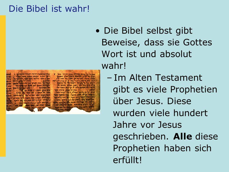 Die Bibel ist wahr! Die Bibel selbst gibt Beweise, dass sie Gottes Wort ist und absolut wahr! –Im Alten Testament gibt es viele Prophetien über Jesus.