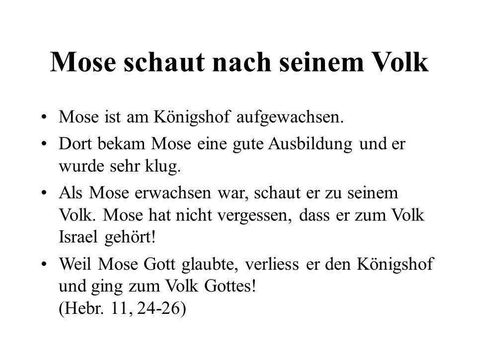Mose schaut nach seinem Volk Mose ist am Königshof aufgewachsen. Dort bekam Mose eine gute Ausbildung und er wurde sehr klug. Als Mose erwachsen war,