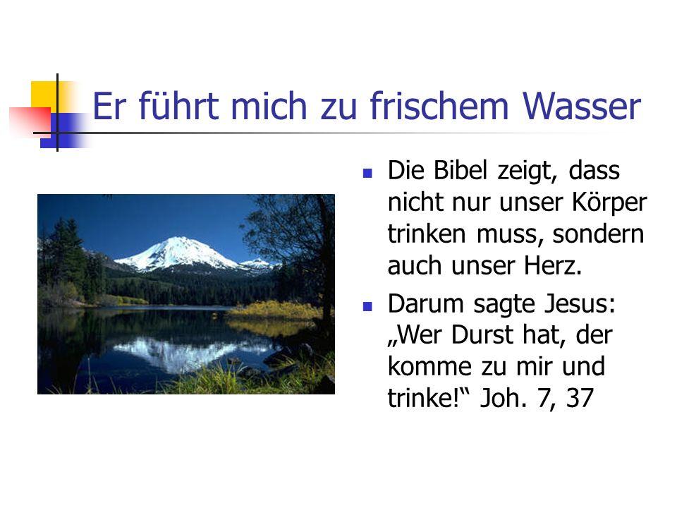 Er führt mich zu frischem Wasser Die Bibel zeigt, dass nicht nur unser Körper trinken muss, sondern auch unser Herz. Darum sagte Jesus: Wer Durst hat,