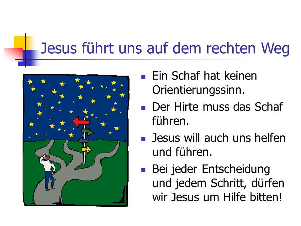 Jesus führt uns auf dem rechten Weg Ein Schaf hat keinen Orientierungssinn. Der Hirte muss das Schaf führen. Jesus will auch uns helfen und führen. Be