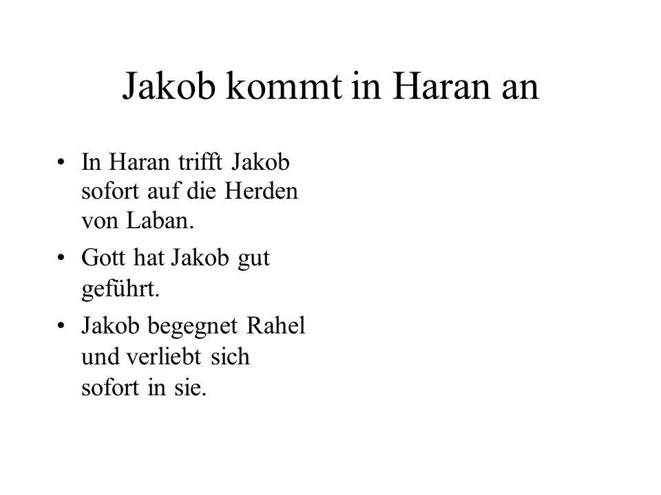 Jakob kommt in Haran an In Haran trifft Jakob sofort auf die Herden von Laban. Gott hat Jakob gut geführt. Jakob begegnet Rahel und verliebt sich sofo