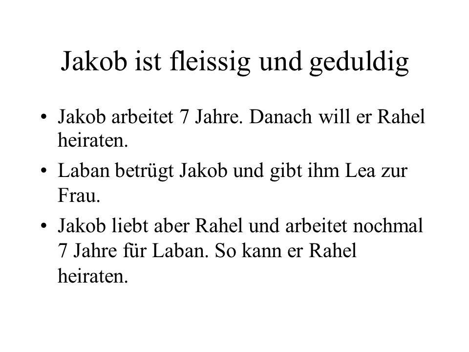 Jakob ist fleissig und geduldig Jakob arbeitet 7 Jahre. Danach will er Rahel heiraten. Laban betrügt Jakob und gibt ihm Lea zur Frau. Jakob liebt aber