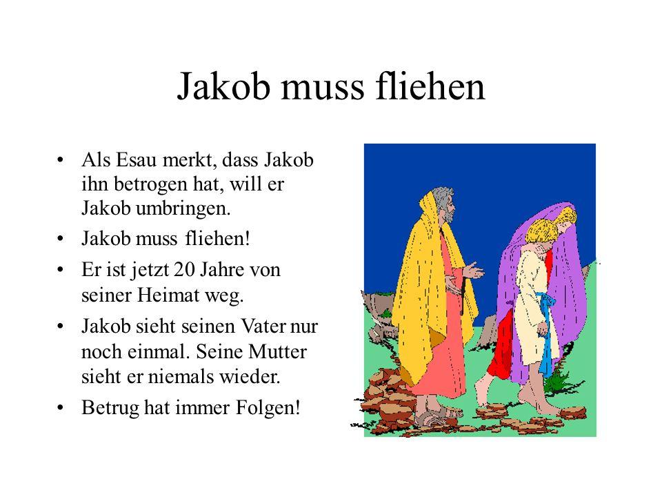 Jakob muss fliehen Als Esau merkt, dass Jakob ihn betrogen hat, will er Jakob umbringen. Jakob muss fliehen! Er ist jetzt 20 Jahre von seiner Heimat w