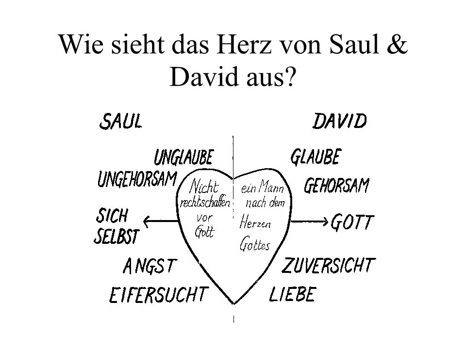 Wie sieht das Herz von Saul & David aus?