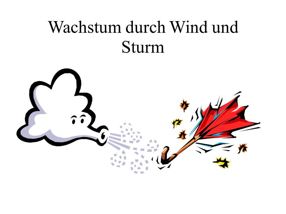 Wachstum durch Wind und Sturm