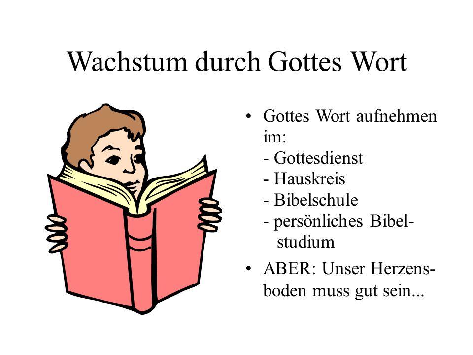 Wachstum durch Gottes Wort Gottes Wort aufnehmen im: - Gottesdienst - Hauskreis - Bibelschule - persönliches Bibel- studium ABER: Unser Herzens- boden