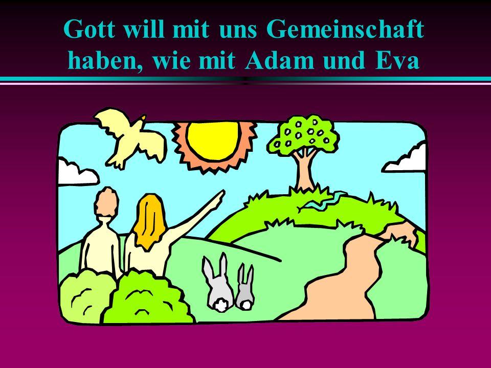 Gott sucht Gemeinschaft mit uns Menschen Durch die Sünde hat Adam diese Gemeinschaft mit Gott verloren.