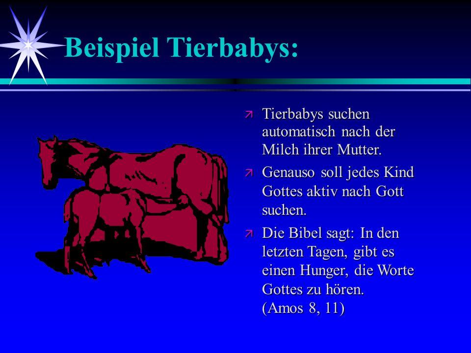 Beispiel Tierbabys: Tierbabys suchen automatisch nach der Milch ihrer Mutter. Tierbabys suchen automatisch nach der Milch ihrer Mutter. Genauso soll j