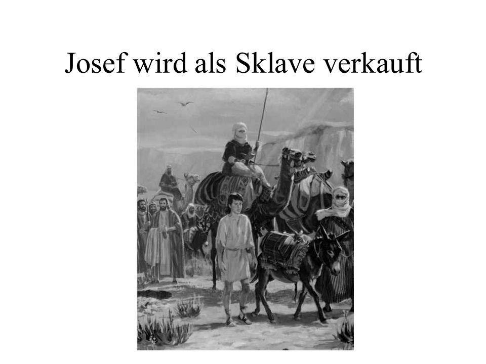 Josef als Sklave bei Potifar Josef wird für 20 Silberstücke verkauft.
