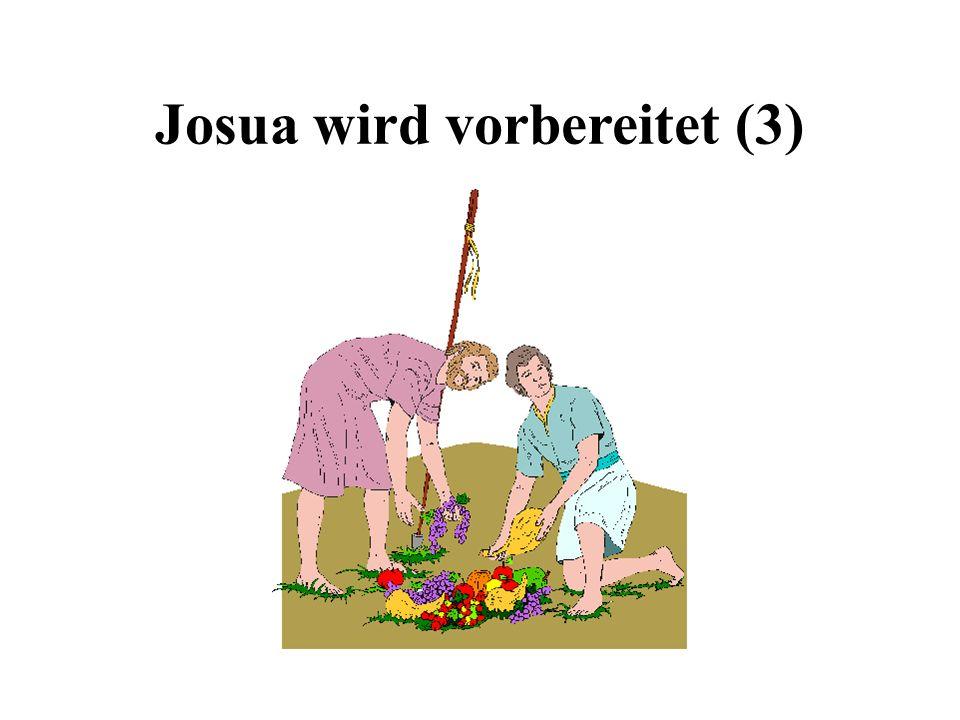 Josua wird vorbereitet (3)