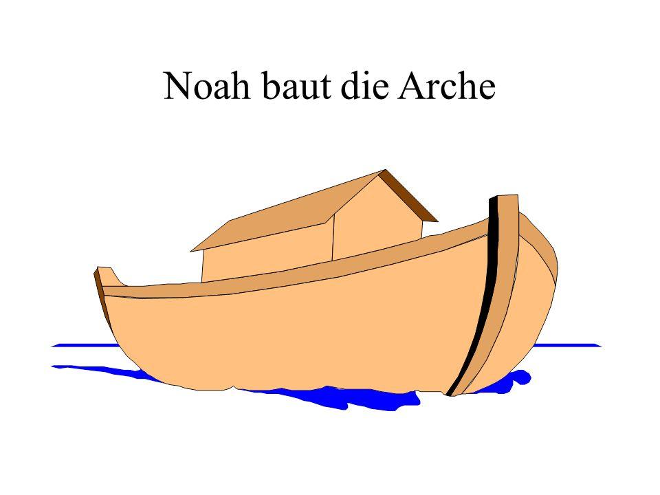Die Arche Noahs