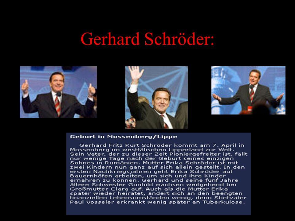 FDP: Im Bundestag hat die FDP 47 Abgeordnete. Es ist eine friedliche und liberale Partei. FDP auf dem net.