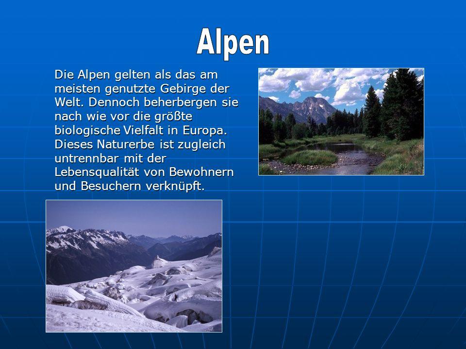 Die Alpen gelten als das am meisten genutzte Gebirge der Welt. Dennoch beherbergen sie nach wie vor die größte biologische Vielfalt in Europa. Dieses