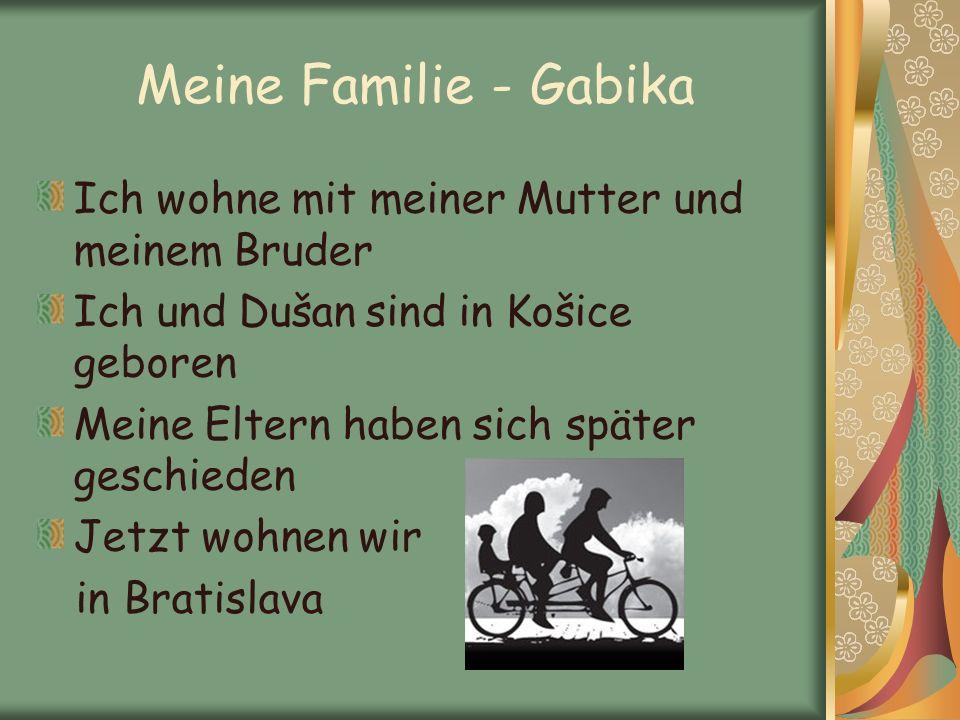 Meine Familie - Gabika Ich wohne mit meiner Mutter und meinem Bruder Ich und Dušan sind in Košice geboren Meine Eltern haben sich später geschieden Je