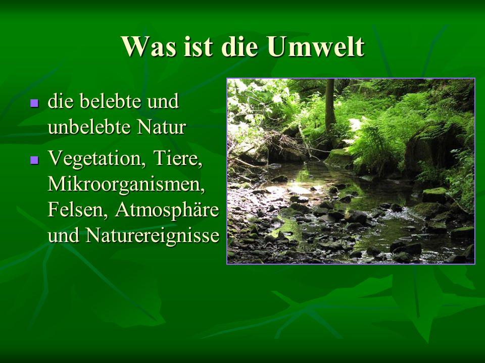 Was ist die Umwelt die belebte und unbelebte Natur Vegetation, Tiere, Mikroorganismen, Felsen, Atmosphäre und Naturereignisse