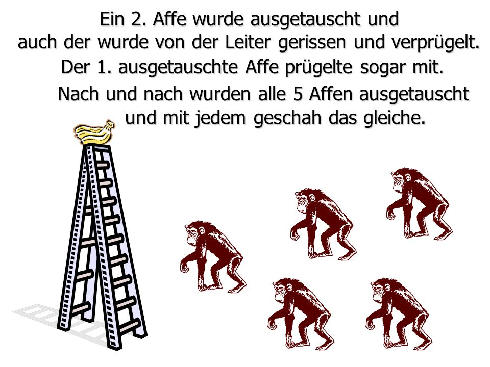 Ein 2. Affe wurde ausgetauscht und auch der wurde von der Leiter gerissen und verprügelt. Nach und nach wurden alle 5 Affen ausgetauscht und mit jedem