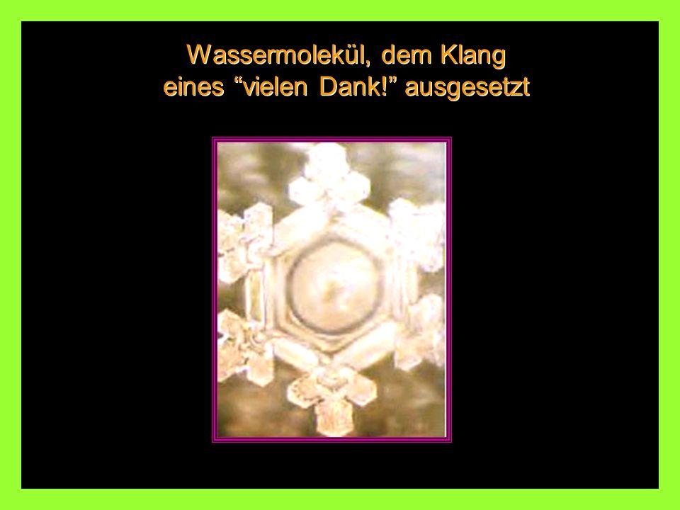 Dasselbe Wassermolekül, dem Klang einer HEAVY METAL ROCK-MUSIK ausgesetzt. Wassermolekül, das der Klang-Energie der Arie für Saitenmusik in G-Dur von
