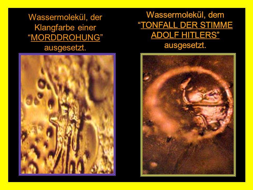 Wassermolekül, demTONFALL DER STIMME ADOLF HITLERS ausgesetzt.
