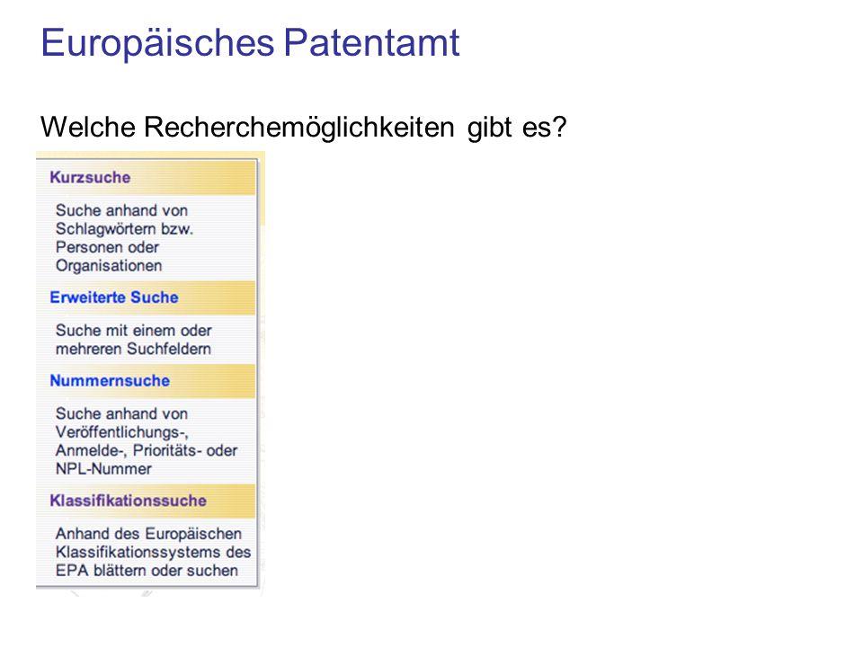 Europäisches Patentamt Welche Recherchemöglichkeiten gibt es?