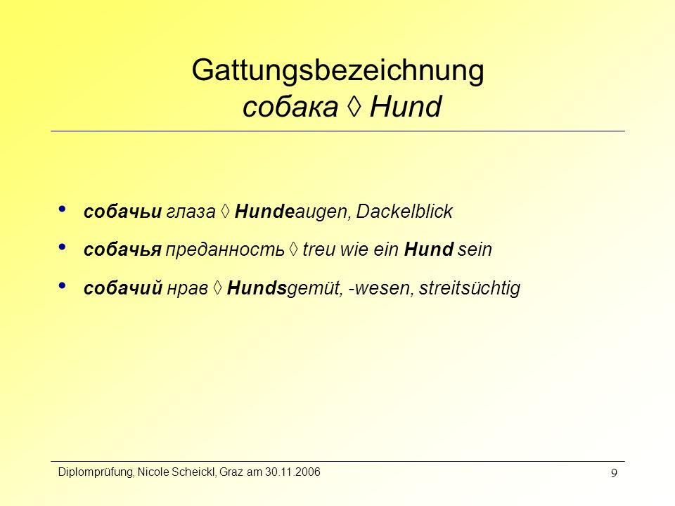 Diplomprüfung, Nicole Scheickl, Graz am 30.11.2006 10 Vergleich der lexikalischen Komponenten