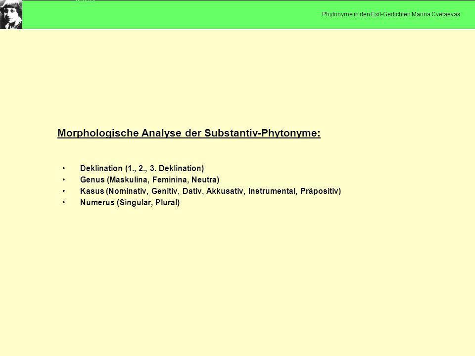 Deklination (1., 2., 3. Deklination) Genus (Maskulina, Feminina, Neutra) Kasus (Nominativ, Genitiv, Dativ, Akkusativ, Instrumental, Präpositiv) Numeru