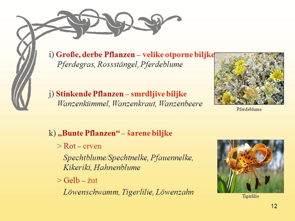 12 i) Große, derbe Pflanzen – velike otporne biljke Pferdegras, Rossstängel, Pferdeblume j) Stinkende Pflanzen – smrdljive biljke Wanzenkümmel, Wanzen