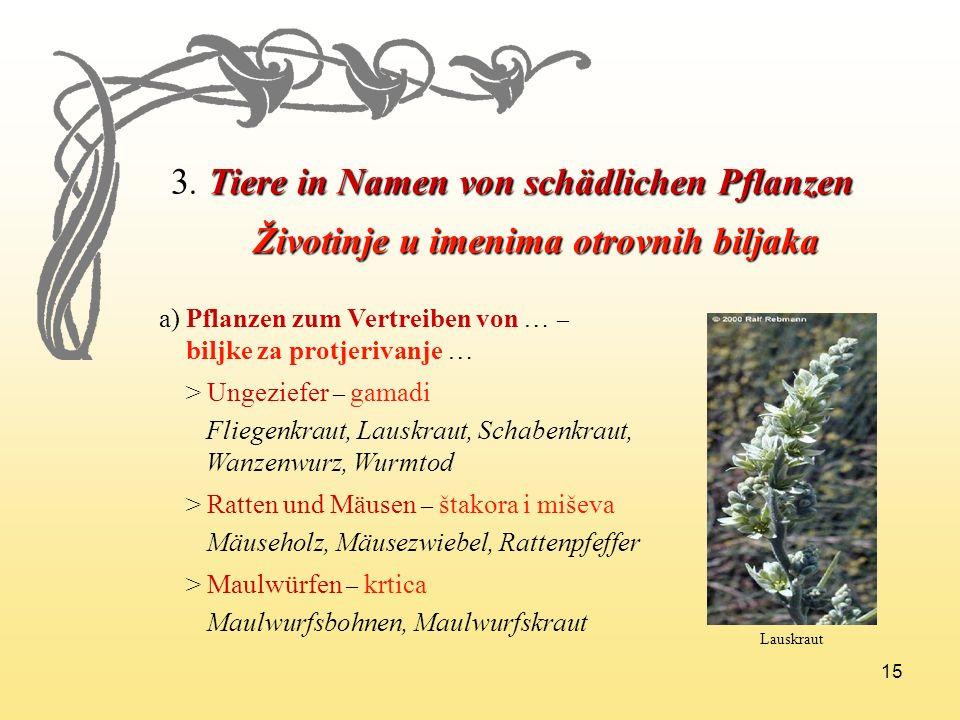 15 3. Tiere in Namen von schädlichen Pflanzen Životinje u imenima otrovnih biljaka Životinje u imenima otrovnih biljaka a) Pflanzen zum Vertreiben von