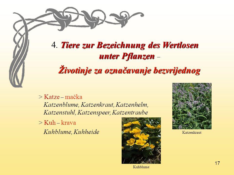 17 4. Tiere zur Bezeichnung des Wertlosen unter Pflanzen unter Pflanzen – Životinje za označavanje bezvrijednog Životinje za označavanje bezvrijednog