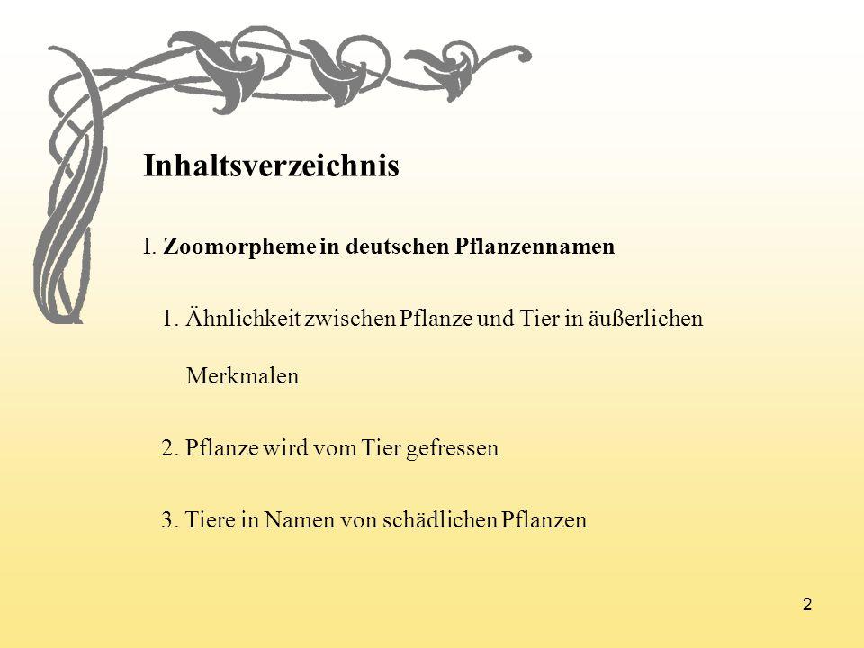 2 Inhaltsverzeichnis I. Zoomorpheme in deutschen Pflanzennamen 1. Ähnlichkeit zwischen Pflanze und Tier in äußerlichen Merkmalen 2. Pflanze wird vom T