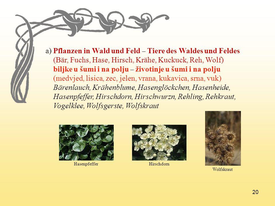 20 a) Pflanzen in Wald und Feld – Tiere des Waldes und Feldes (Bär, Fuchs, Hase, Hirsch, Krähe, Kuckuck, Reh, Wolf) biljke u šumi i na polju – životin