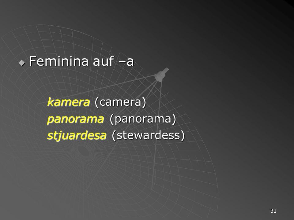 31 Feminina auf –a Feminina auf –a kamera (camera) panorama (panorama) stjuardesa (stewardess)