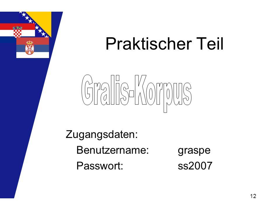 12 Praktischer Teil Zugangsdaten: Benutzername:graspe Passwort: ss2007