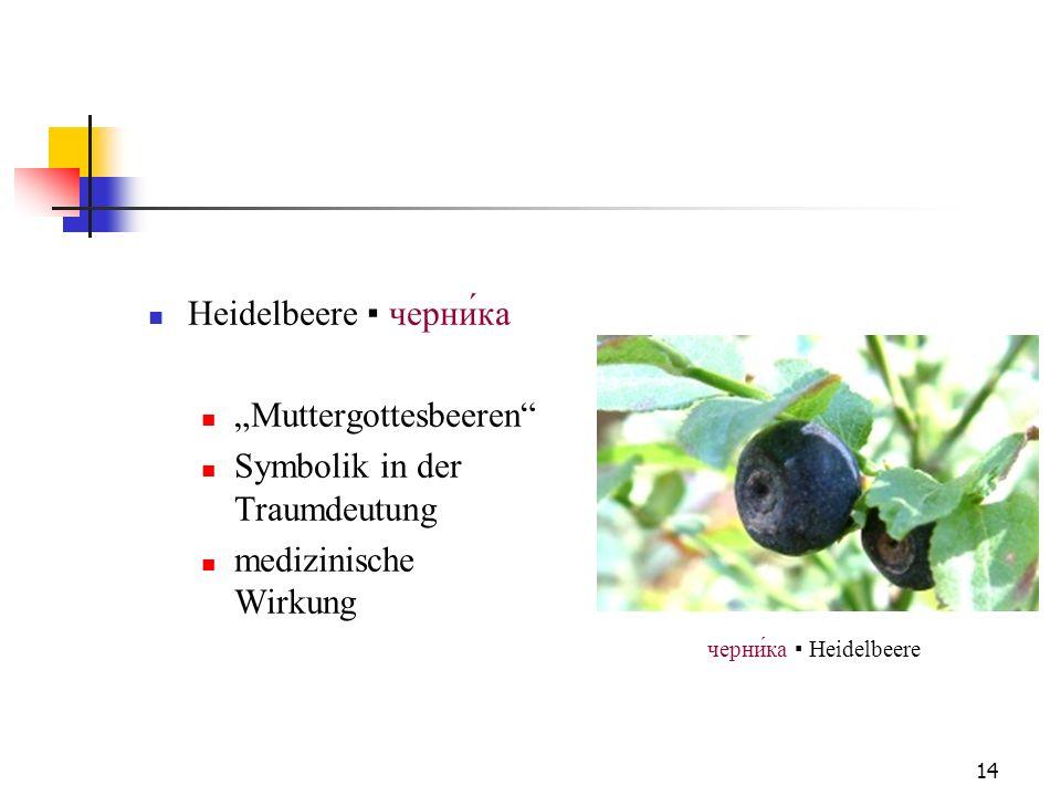 14 Heidelbeere черни́ка Muttergottesbeeren Symbolik in der Traumdeutung medizinische Wirkung черника Heidelbeere