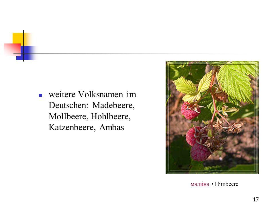 17 weitere Volksnamen im Deutschen: Madebeere, Mollbeere, Hohlbeere, Katzenbeere, Ambas малина Himbeere