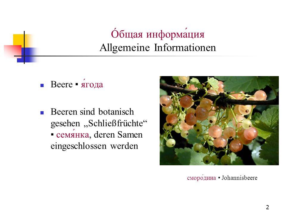 2 Óбщая информация Allgemeine Informationen Beere ягода Beeren sind botanisch gesehen Schließfrüchte семянка, deren Samen eingeschlossen werden сморо