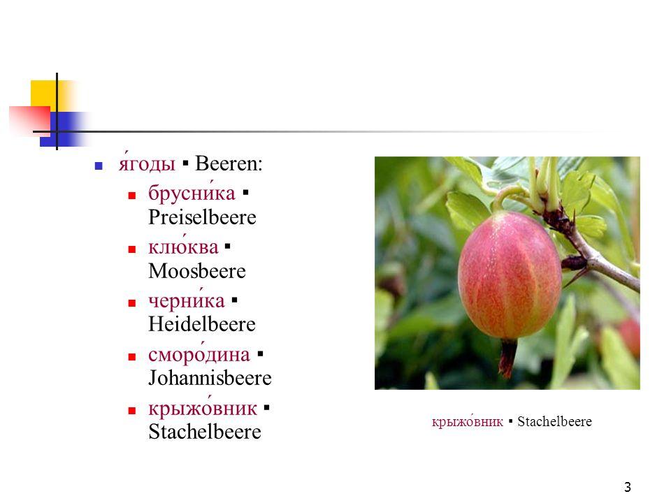 4 помидор Tomate огурец Gurke банан Banane кака́о Kakao помидор Tomate
