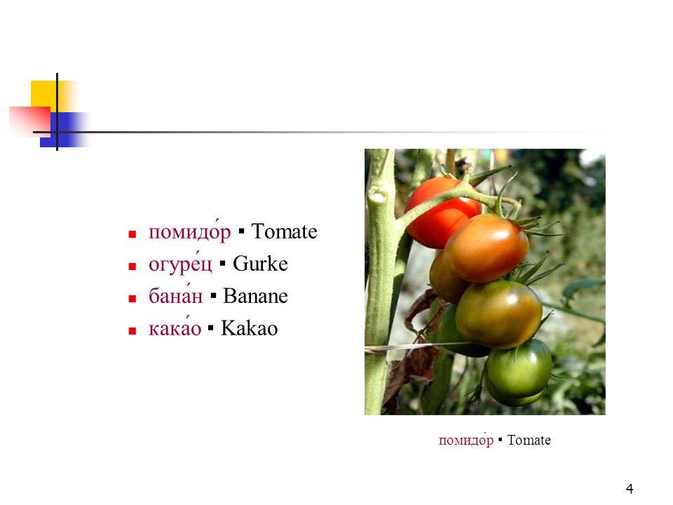 5 Himbeere мали́на und Brombeere ежевика zählen zu den Sammelsteinfrüchten Erdbeere земляника/клубни́ка zu den Sammelnussfrüchten trotzdem zählt man sie zum sogenannten Beerenobst ягоды клубни́ка Erdbeere