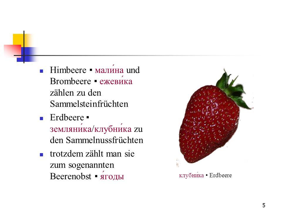 5 Himbeere мали́на und Brombeere ежевика zählen zu den Sammelsteinfrüchten Erdbeere земляника/клубни́ка zu den Sammelnussfrüchten trotzdem zählt man s