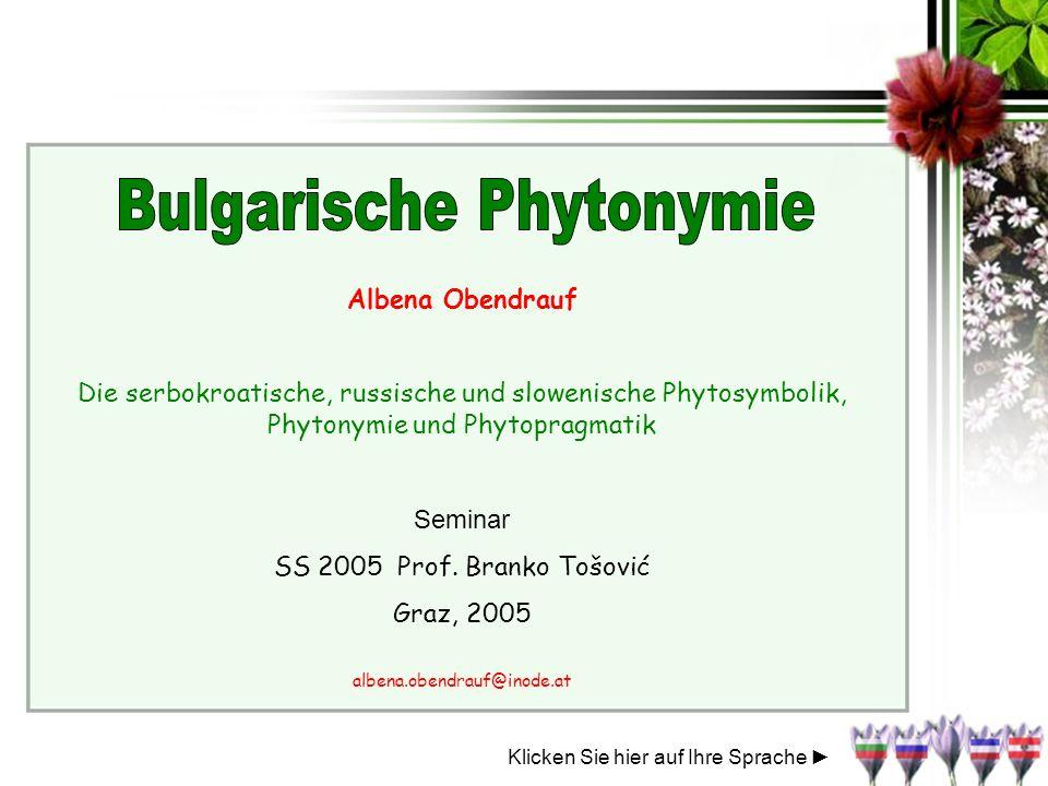 Albena Obendrauf Die serbokroatische, russische und slowenische Phytosymbolik, Phytonymie und Phytopragmatik Seminar SS 2005 Prof. Branko Tošović Graz