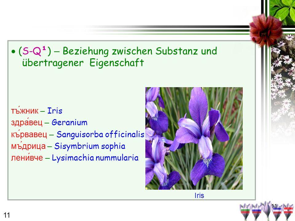11 (S-Q¹) – Beziehung zwischen Substanz und übertragener Eigenschaft тъжник – Iris здравец – Geranium кървавец – Sanguisorba officinalis мъдрица – Sis