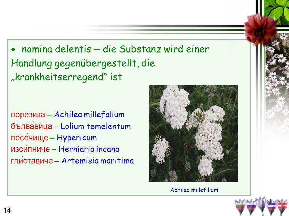14 nomina delentis – die Substanz wird einer Handlung gegenübergestellt, die krankheitserregend ist поре́зика – Achilea millefolium бълвавица – Lolium temelentum посе́чище – Hypericum изсипниче – Herniaria incana гли́ставиче – Artemisia maritima Achilea millefilium 14