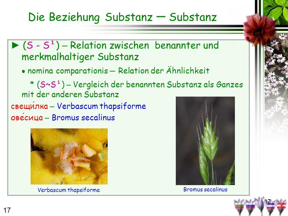 17 Die Beziehung Substanz – Substanz (S - S¹) – Relation zwischen benannter und merkmalhaltiger Substanz nomina comparationis – Relation der Ähnlichke
