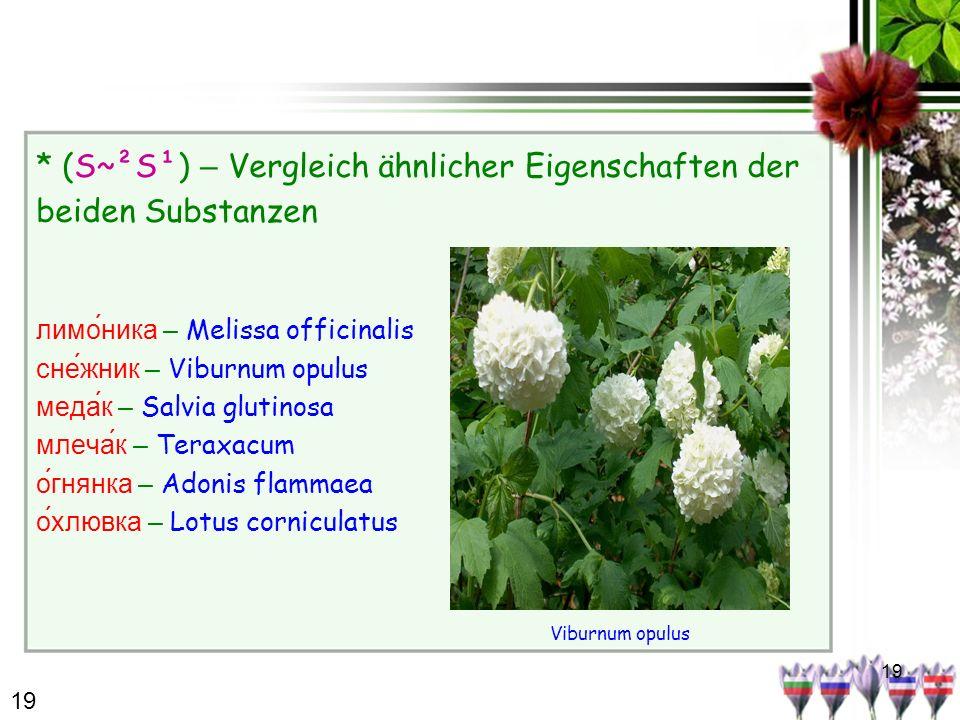 19 * (S~²S¹) – Vergleich ähnlicher Eigenschaften der beiden Substanzen лимо́ника – Melissa officinalis сне́жник – Viburnum opulus медак – Salvia gluti