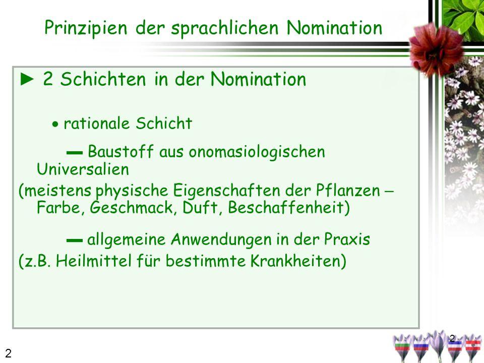 2 Prinzipien der sprachlichen Nomination 2 Schichten in der Nomination rationale Schicht Baustoff aus onomasiologischen Universalien (meistens physische Eigenschaften der Pflanzen – Farbe, Geschmack, Duft, Beschaffenheit) allgemeine Anwendungen in der Praxis (z.B.
